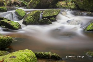 water_7759
